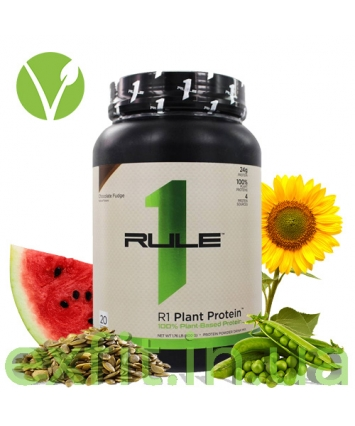 R1 (Rule One) Plant Protein (800 g)