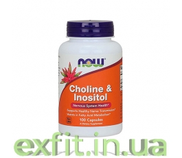 Choline & Inositol 500 mg (100 капсул)